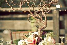 floral / by Cindi Berrett