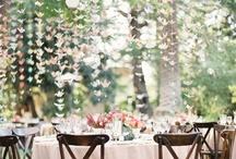 Wedding Decor / by April Thomason