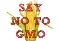 Label GMOs / by Dr. Bronner's Magic Soaps