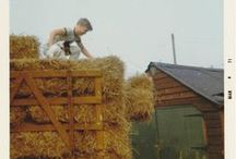 Smallholding Family History / by The Good Life In Practice (Katy Runacres)