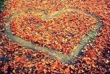 Love Autumn / by City Lodge