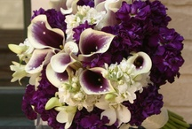 Wedding - Flowers  / by jMarie