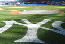 My Team the Yankee`s / by Evelina Phelps