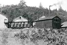 Historic Photo Album / by Geyser Peak Winery