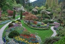Gardens / by Michael Viart