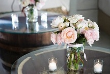 Decor / by Rocky Mountain Worm Company