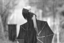 ▒▒  It's Raining ▒▒ / rain rain rain / by karamelo oz