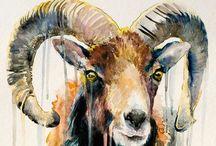 Ram-bunctious Aries / by Zoë Roo