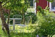 Sommar / by Trädgårdsakademin