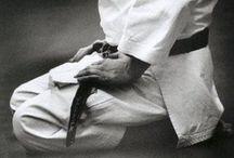 Shotokan Karate / by Elisa Fedeli