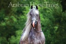 AHT Magazine Covers / by Arabian Horse Times