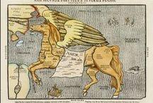 Nice Maps / Pinterest ist ein Arsenal an Bildern. Zum Teil findet man hier wunderschöne und interessante Landkarten, die man sicherlich ohne Pinterest nie entdeckt hätte.  / by landkartenindex (en: mapsindex)