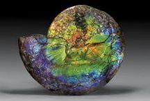 rocks that rock! / by Glynis Steel