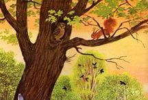 Animals:Squirrels,otters,meerkats,rabbits,racoons, porcupines, skunks, bats, sloths, jerboas.. / Beautiful animals. / by Cecilia Bowerman