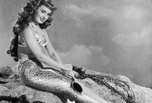 Mr. Peabody and the Mermaid / by Elizabeth Ayala