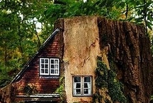 Architecture Natural  / A little bit closer than the norm or mobile / by Gini Paton