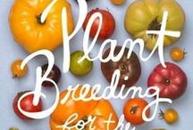 Homestead   Gardening / by Paisley Knight