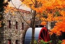Autumn / by Outdoor Statues Shop with Barbara Keen