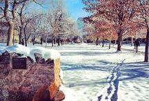Winter / by Colorado School of Mines