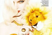 ♌ Leo ♌ / Sun-Ruled - Royal - Warmhearted - Creative - Strong - Dramatic - Ambitious - Bold - Queen of the Jungle  / by vicktoria vadas