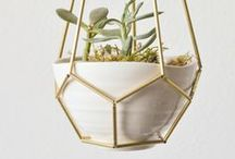 DIY: home ideas / Small collection of diy ideas. Forniture renovation, home decor, candles, plants and so on... / by One O