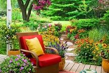 Step into our Zen Garden / by Zen Bedrooms