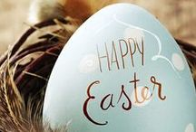 Bunny Love / All things Easter! / by The Sorority Secrets