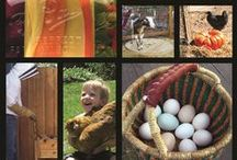 Homesteading / by Anisa - Lazy Homesteader