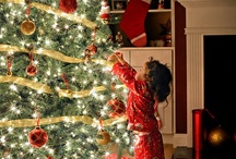 Christmas Joy! / by Sharon Rose