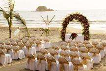 Beach Wedding Ideas / by Jexa Design
