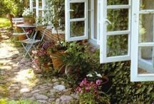 secret gardens / by Jennifer Natola