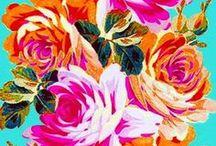 Palette / by Kate Bratt