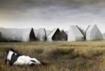 Cabins / by Tim Derrington, AIA