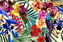 Pattern Florais / by Patricia Rodrigues