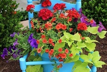 Gardening and Landscaping / by Cheryl Wedlake