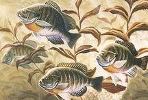 Fishing: Summer & Winter Panfish / Pan fish: Crappies, Sunfish, Bluegills. / by Al DeWolf