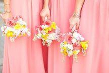 Future Wedding  / by Abbigail Jo