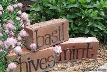 Gardening & Outdoor Inspiration / by D Freeman