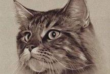 Mascotas / Sobre Mascotas, dibujos, pinturas, información, cartles, accesorios, etc / by Mª Jesús Sanchez