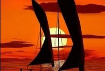 Sail Away With Me / by Sarah Sweeney