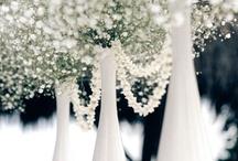 Dream Winter Wonderland Wedding / has ideas of what i think my dream wedding should be about 8) / by Lynn Rose