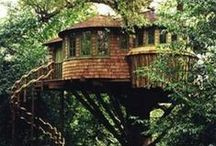 Tree Houses / by Ginger Whitehead