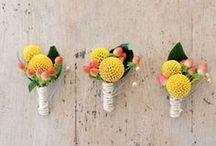 Wedding Flowers / by Gardenista