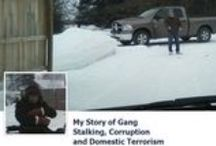 My Story of Gang Stalking, Corruption and Domestic Terrorism / by Debra Matheny