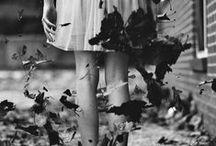 Fall Art / by Samantha Barteldt