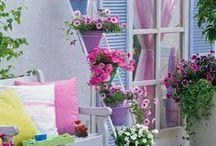 Home sweet home!! / by azucena pérez
