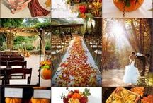 Our Fall In Love Wedding / by Marissa Gallegos