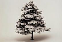 Christmas / by Anne Hosio