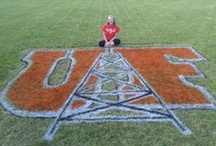 Oiler Pride / Oilers bleed orange and black and tend to wear their hearts on their sleeves! Show us how you rock Oiler Pride! / by The University of Findlay