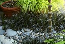 Garden / by Nicole Thibeault